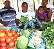 Call for healthy diets in fighting hunger